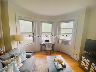 Brookline Apartment for rent 1 Bedroom 1 Bath  Longwood Area - $1,960 No Fee